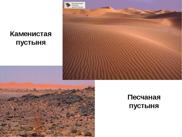 Песчаная пустыня Каменистая пустыня