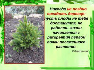 Никогда не поздно посадить деревце: пусть плоды не тебе достанутся, но радос
