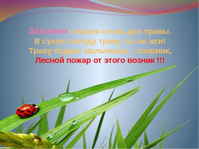 Запомни: опасен огонь для травы. В сухую погоду траву, ты не жги! Траву подж...