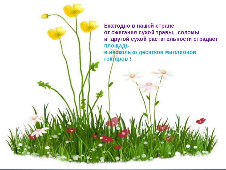 Ежегодно в нашей стране от сжигания сухой травы, соломы и другой сухой расти...