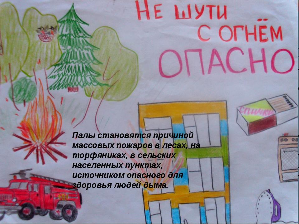 Палы становятся причиной массовых пожаров в лесах, на торфяниках, в сельских...