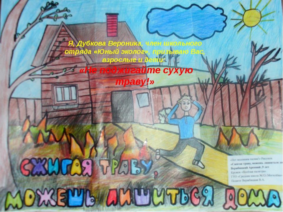 Я, Дубкова Вероника, член школьного отряда «Юный эколог», призываю Вас, взро...