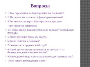 Вопросы 1. Как переводится на башкирский язык эдельвейс? 2. Вы знаете как наз