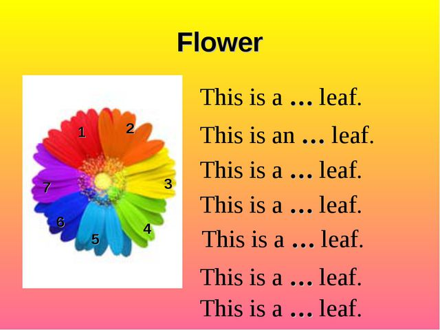 Flower 1 2 3 4 5 6 This is a … leaf. This is an … leaf. This is a … leaf. Thi...