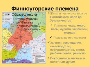 Финноугорские племена Жители лесного севера от Балтийского моря до Уральских