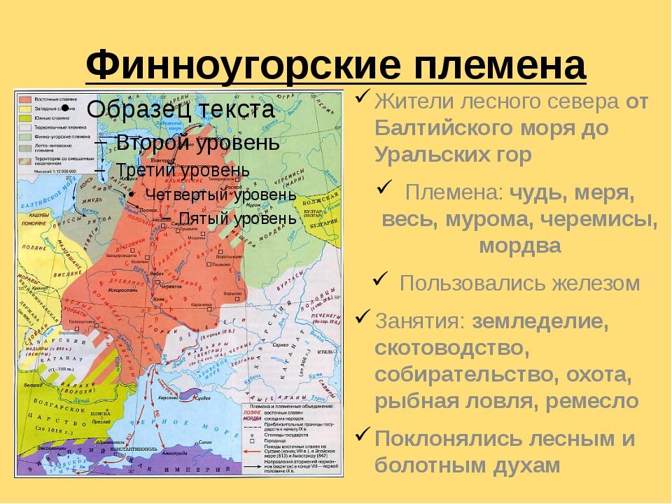 Финноугорские племена Жители лесного севера от Балтийского моря до Уральских...