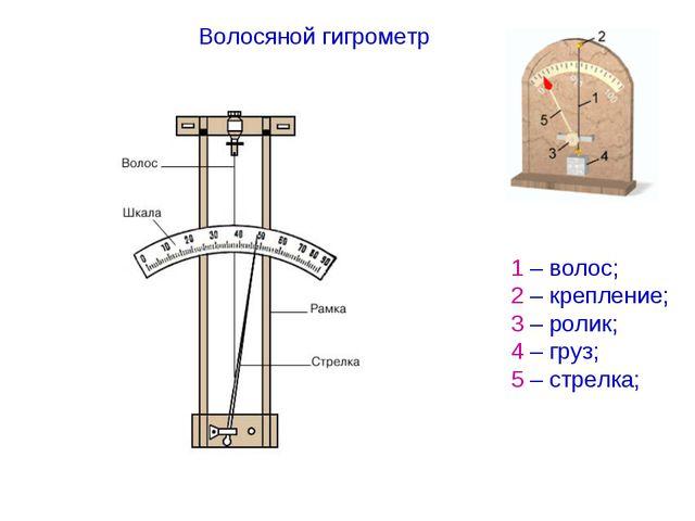 Волосяной гигрометр 1 – волос; 2 – крепление; 3 – ролик; 4 – груз; 5 – стрелка;