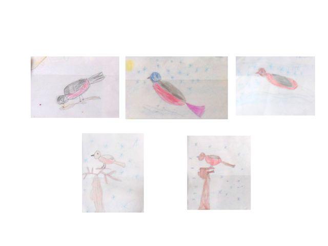 Рисование «Снегири на ветке рябины»