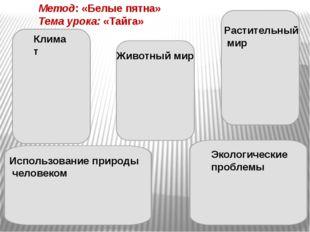 АМО на этапе изучения нового материала Автобусная остановка Кластер Представл