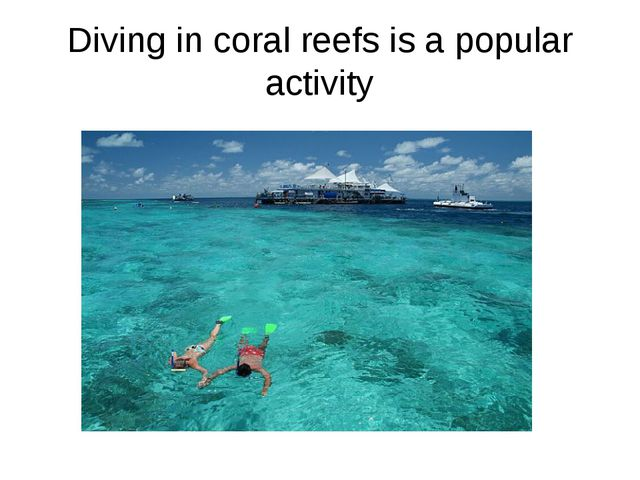 Diving in coral reefs is a popular activity