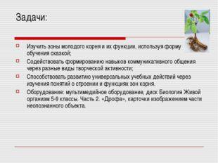 Задачи: Изучить зоны молодого корня и их функции, используя форму обучения ск