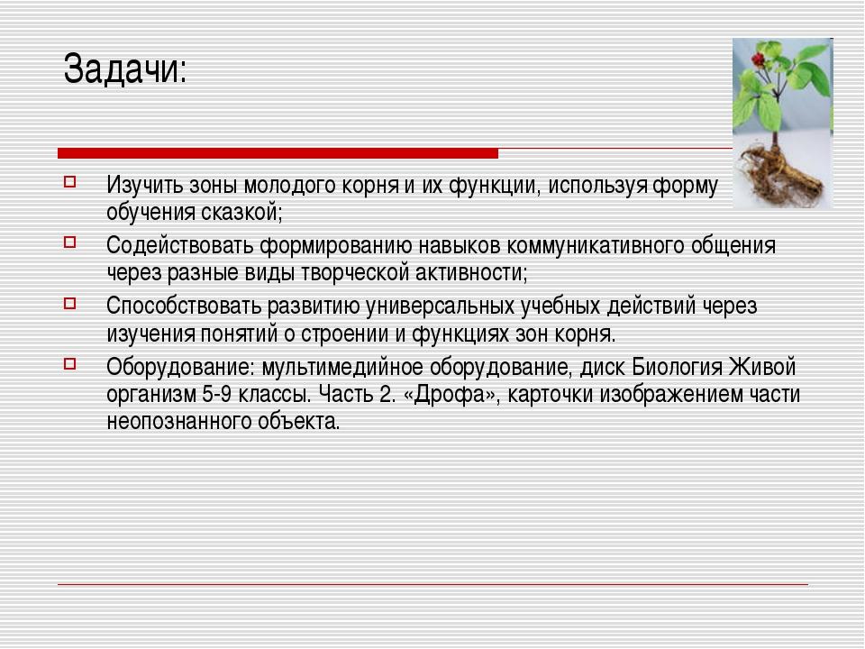 Задачи: Изучить зоны молодого корня и их функции, используя форму обучения ск...