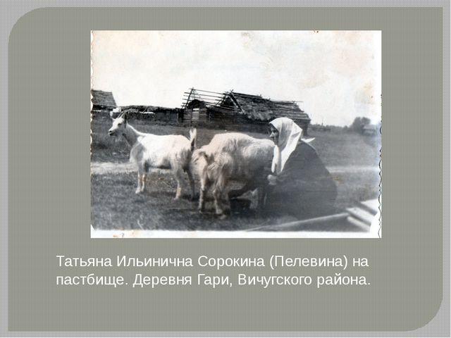 Татьяна Ильинична Сорокина (Пелевина) на пастбище. Деревня Гари, Вичугского р...
