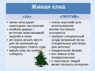 Живая елка «ЗА» «ПРОТИВ» запах хвои дарит новогоднее настроение хвойное дерев