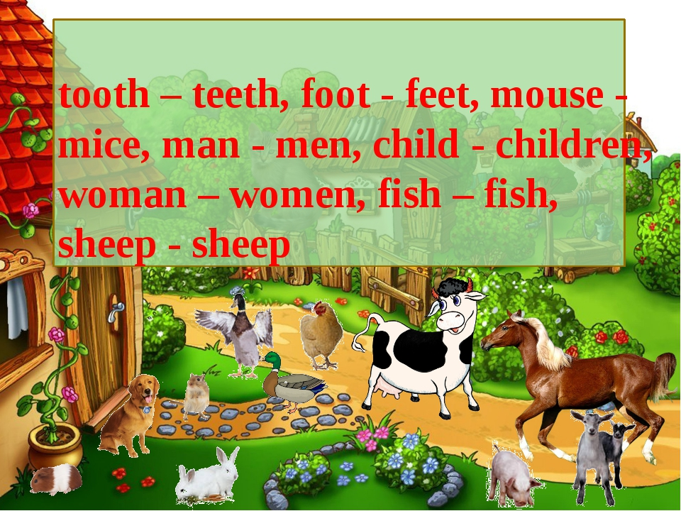 . tooth – teeth, foot - feet, mouse - mice, man - men, child - children, woma...