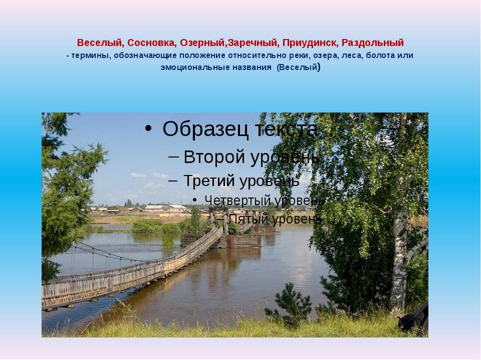 Веселый, Сосновка, Озерный,Заречный, Приудинск, Раздольный - термины, обознач...