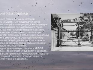 ОСВЕНЦИМ (НЕМ. АУШВИЦ) Освенцим был самым большим лагерем, основанным немцами