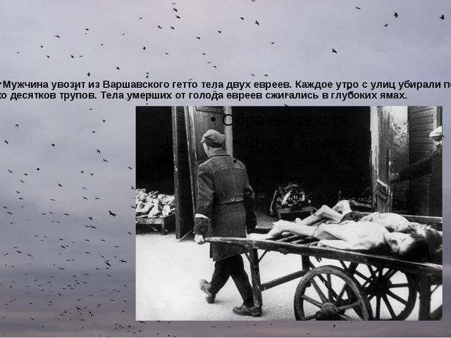 1943 год. Мужчина увозит из Варшавского гетто тела двух евреев. Каждое утро с...