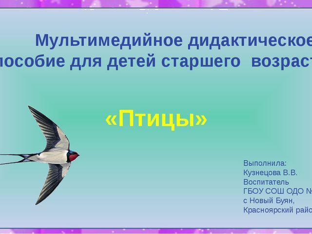 Мультимедийное дидактическое пособие для детей старшего возраста «Птицы» Вып...