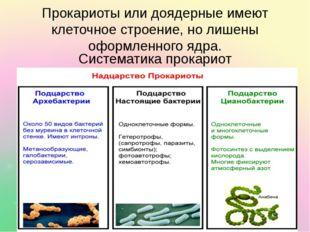 Прокариоты или доядерные имеют клеточное строение, но лишены оформленного ядр