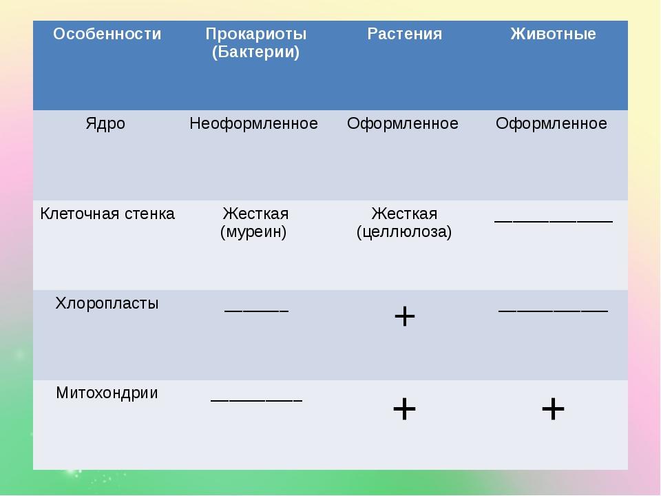 Особенности Прокариоты (Бактерии) Растения Животные Ядро Неоформленное Оформ...
