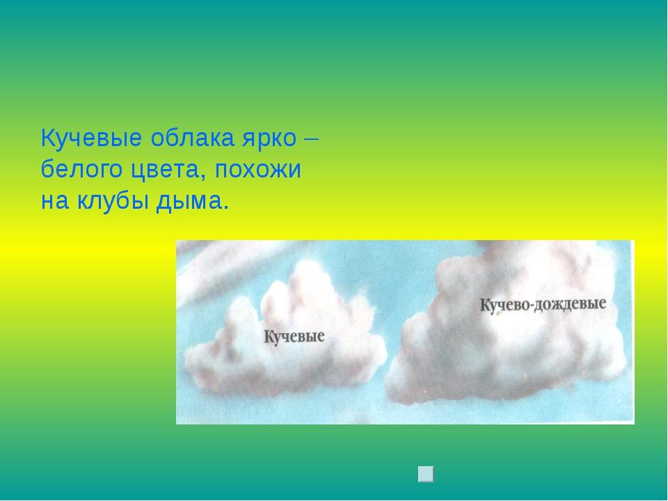 Кучевые облака ярко – белого цвета, похожи на клубы дыма.