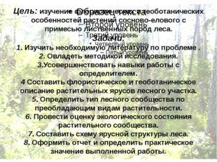 Цель: изучение флористических и геоботанических особенностей растений сосново