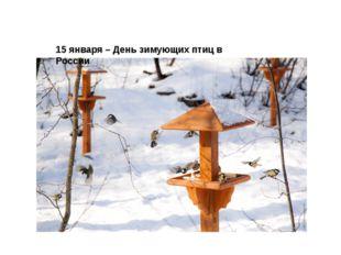 15 января–День зимующих птиц в России