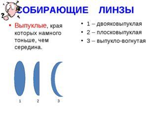 СОБИРАЮЩИЕ ЛИНЗЫ Выпуклые, края которых намного тоньше, чем середина. 1 – дво