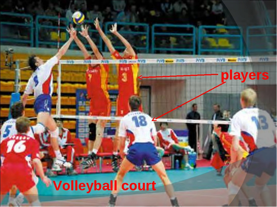 Volleyball court players