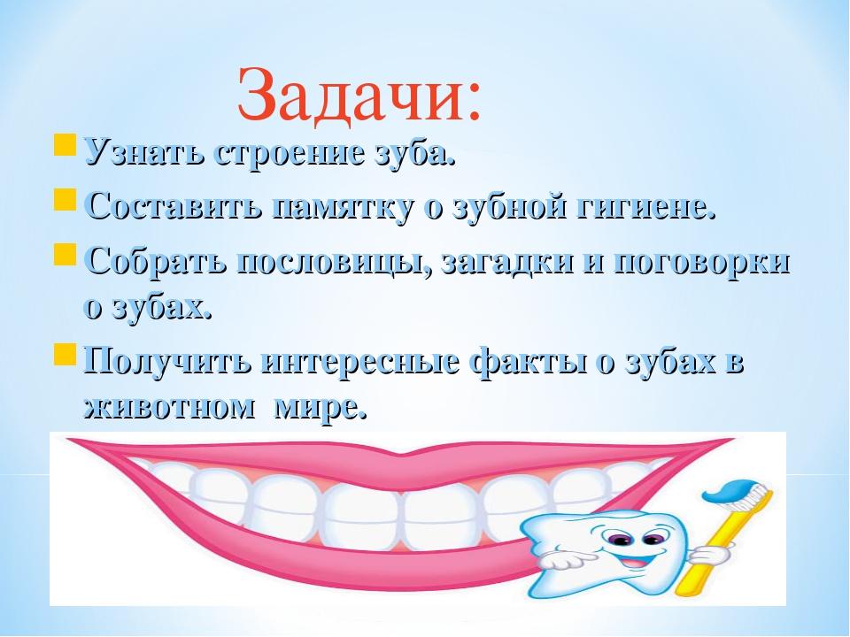 Доклад о гигиене зубов 1137