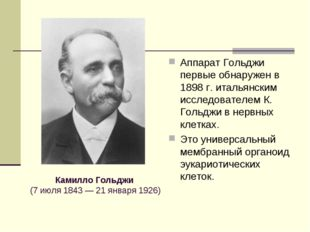 Аппарат Гольджи первые обнаружен в 1898 г. итальянским исследователем К. Голь