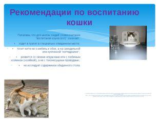 Рекомендации по воспитанию кошки Полагаем, что для многих людей словосочетани