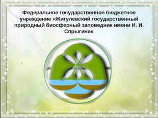 Федеральное государственное бюджетное учреждение «Жигулёвский государственный