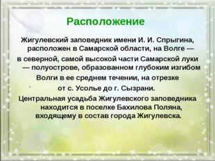 Расположение Жигулевский заповедник имени И. И. Спрыгина, расположен в Самарс