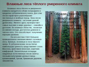 Влажные леса тёплого умеренного климата Влажные леса тёплого и умеренного кли