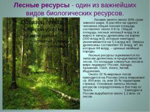 Лесные ресурсы - один из важнейших видов биологических ресурсов. Лесами занят