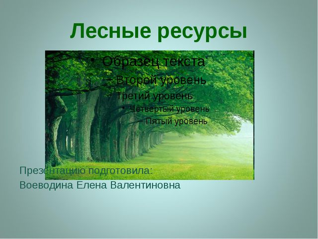 Лесные ресурсы Презентацию подготовила: Воеводина Елена Валентиновна