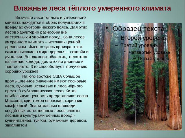 Влажные леса тёплого умеренного климата Влажные леса тёплого и умеренного кли...