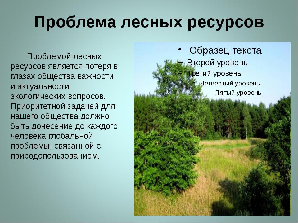 Проблема лесных ресурсов Проблемой лесных ресурсов является потеря в глазах о...