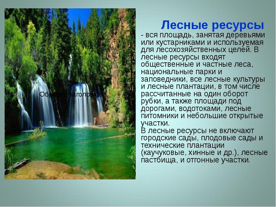 Лесные ресурсы - вся площадь, занятая деревьями или кустарниками и используе...