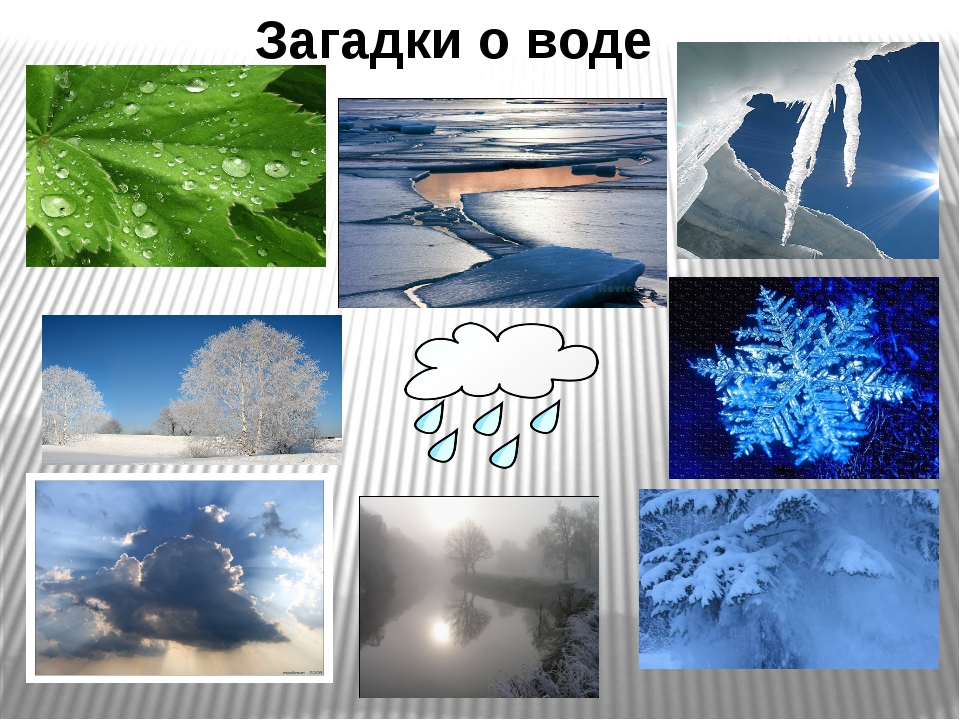 Загадки о воде