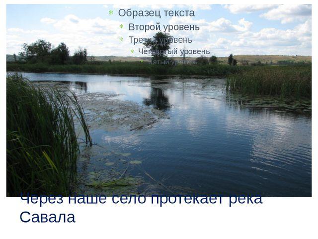 Через наше село протекает река Савала