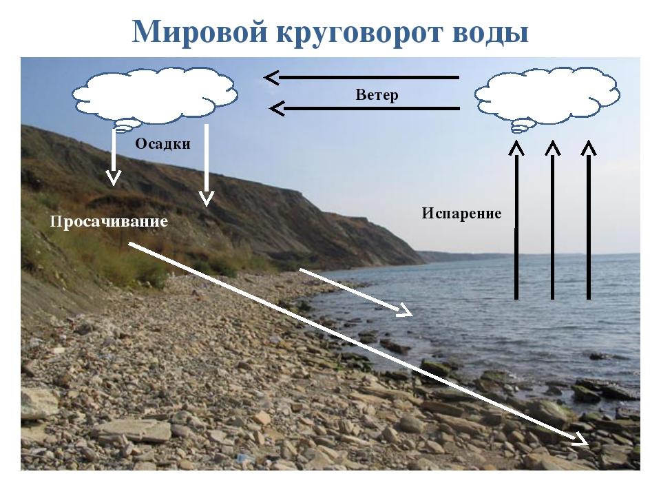 Мировой круговорот воды в природе Испарение Ветер Осадки Просачивание