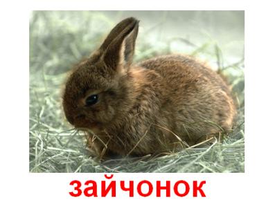 hello_html_7fb7d38e.png