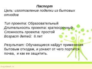 Паспорт Цель: изготовление поделки из бытовых отходов Тип проекта: Образовате