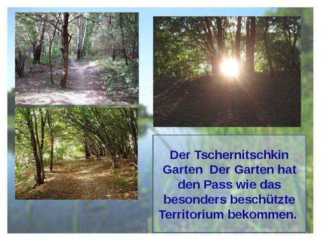 Der Tschernitschkin Garten Der Garten hat den Pass wie das besonders beschütz...