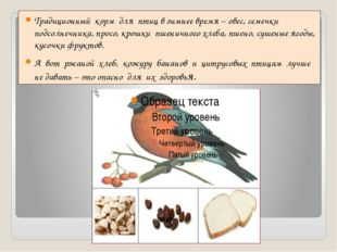 Традиционный корм для птиц в зимнее время – овес, семечки подсолнечника, про