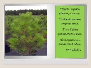Дерево, трава, цветок и птица Не всегда умеют защититься. Если будут уничтож