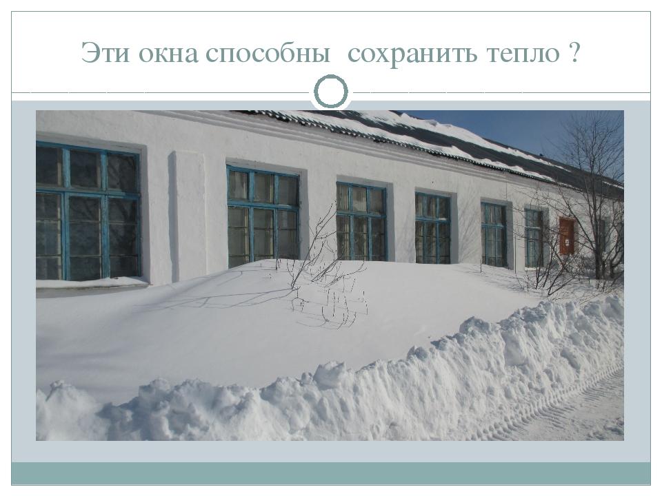 Эти окна способны сохранить тепло ?